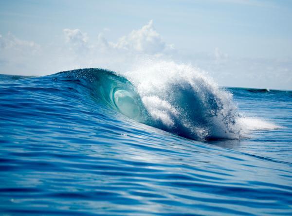 Patina Oceano